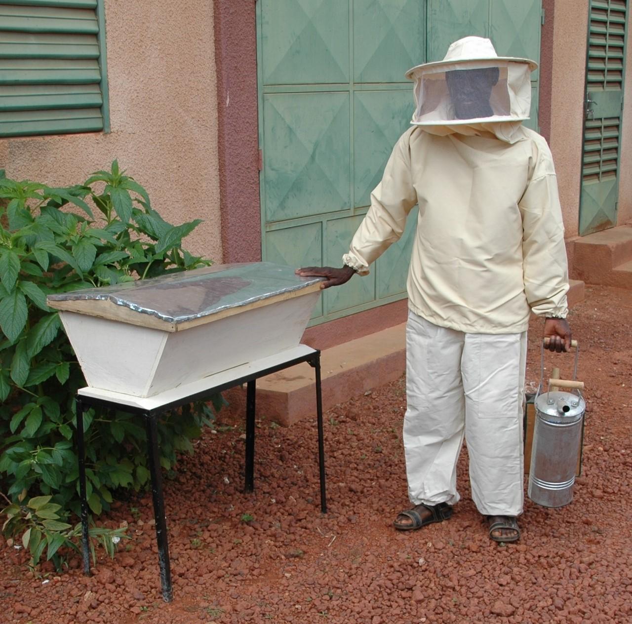 apiculture-2