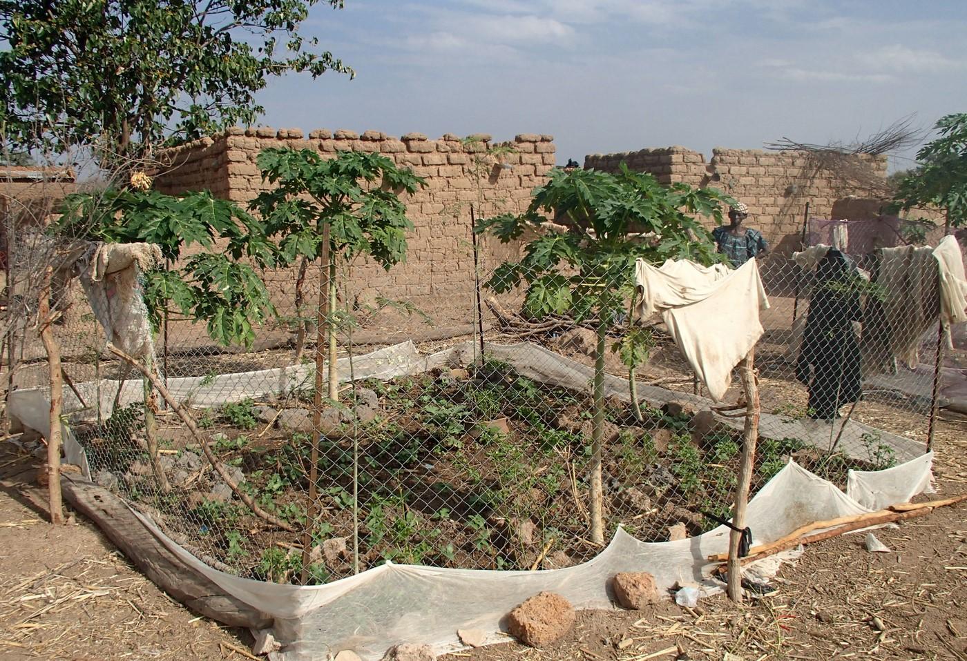 Economique Jardins femmes